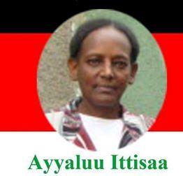 Seenaa Ad Ayyaluu Ittisaa (1968-2015)